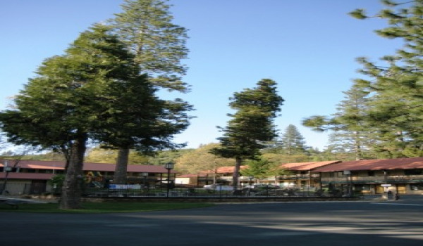 Yosemite Westgate Lodge - We are nestled deep in Stanislaus National Forest