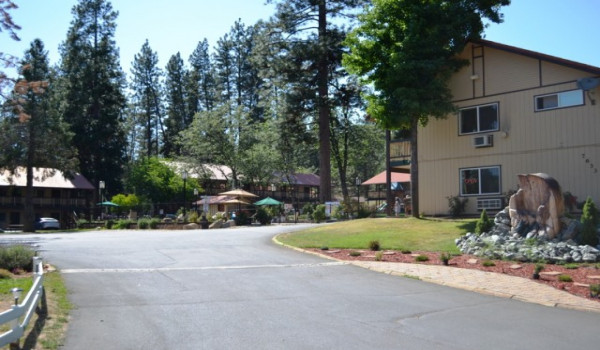 Yosemite Westgate Lodge - Welcome to our forest oasis located near Yosemite